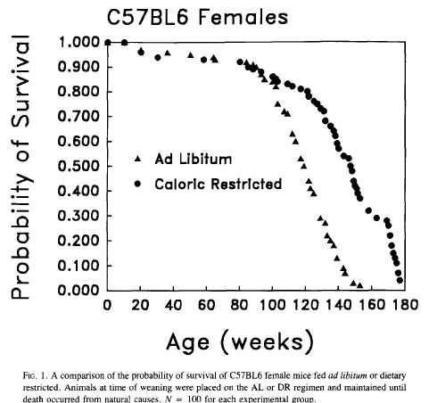 Will Serious CR Beat a Healthy, Obesity-Avoiding Diet