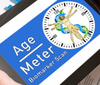 AgeMeterLC.PNG